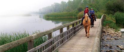 Riding Parkland Region Manitoba