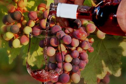 Weinglas, Wein und Weintrauben