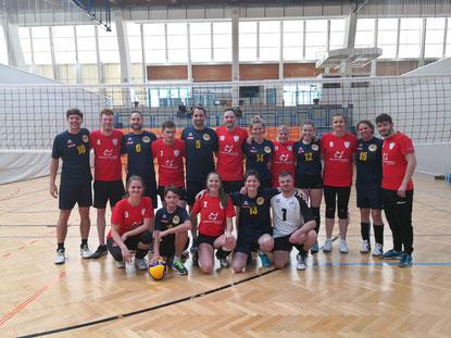 Volleyball-Harmonie: NÖ-Wien und GSBV Halle/S.
