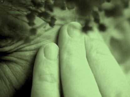 Migräne – viele Ursachen, viele Formen. Die ausführliche Anamnese ist der Schlüssel auf dem Weg zur Heilung