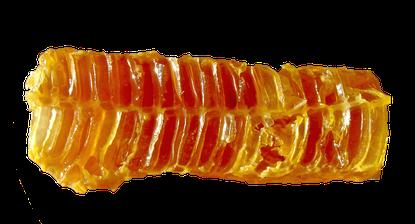 Medi-Honey heilt Wunden
