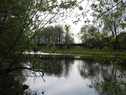 Die Oderbrücke