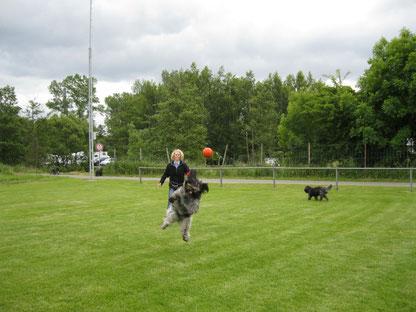 unser fliegende Holländer!!!
