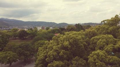 구마모토 성 제일 높은 층에서의 사진:) 풍경이 참으로 아름다운 곳, 구마모토입니다
