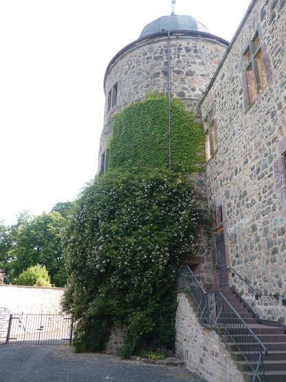 Dornröschen Schloss Sababurg