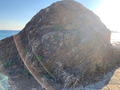 伊良湖岬の岩