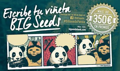 concurso escribe tu viñeta cannabica panda big seeds, sorteo semillas marihuana entre los participantes del concurso big seeds