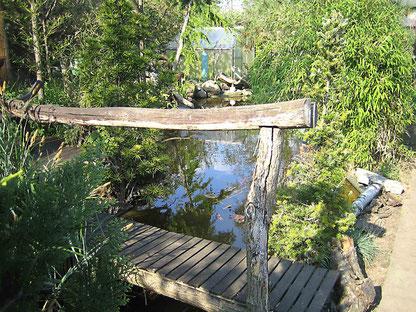 Brücke am Teich