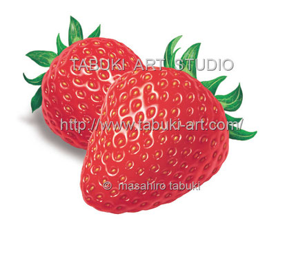 水滴一杯 苺 イラスト リアル 新鮮 イチゴ  フルーツイラスト fruit illustration