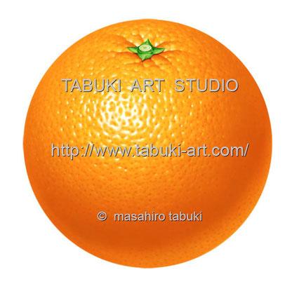 Orange丸 RD_10509