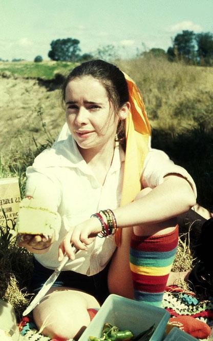1974 picnic