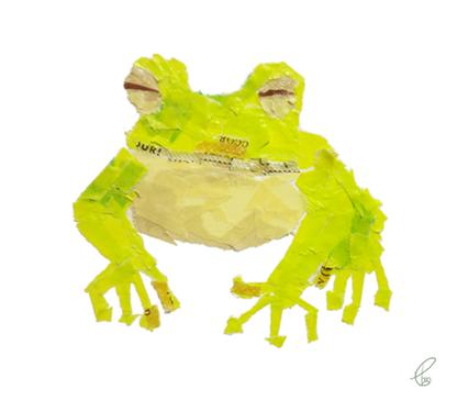 青蛙/マスキングテープ PhotoshopCS6 2013,5.23