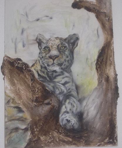 Katze auf Baumstamm 15a