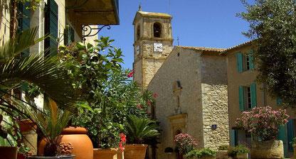 Ramonage à Ventabren et Aix en provence