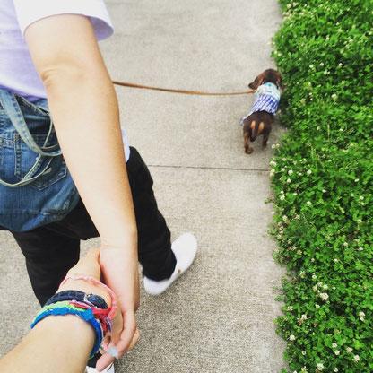 近所で散歩☺︎チョコも嬉しそう♡