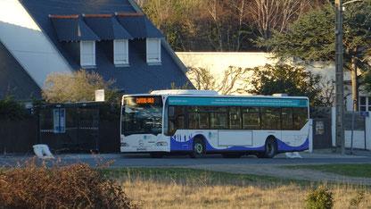 Le dernier né du réseau, le Mercedes Citaro 1 N numéro 77, dessert le nouvel arrêt Pont, qui a été équipé d'un abribus.