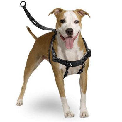 Hier wird der Hund beim Ziehen mit dem Oberkörper nach unten gedrückt und das Ziehen soll so unterbunden werden. Die Karabiner, viel zu schmale Gurte und eine schlechte Passform verleiden jedem Hund entspanntes Laufen an der Leine.