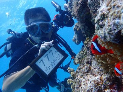 石垣島でのんびりダイビング「㊗777」ヒートハートクラブ