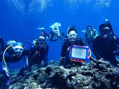 石垣島でのんびりダイビング「記念200ダイブ」ヒートハートクラブ