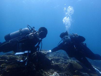 石垣島でのんびりダイビング「ダイバー誕生」ヒートハートクラブ