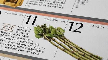 和食の暦カレンダー2018年版_虎杖_SLP