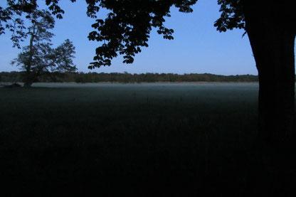Naturerlebnis Mönchbruch