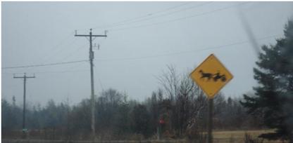 Achtung: Amish People kreuzen