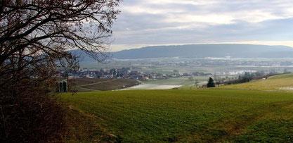 Gächlingen im Kanton Schaffhausen. Das Weingebiet des Klettau