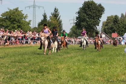 """Zum Ponyrennen 2012 stellten sich 12 junge Reiterinnen und Reiter auf ihren Shettys der Herausforderung und kämpften um den Sieg. Die Lokalmatadorin """"Nelly"""" (Nr. 8) konnte das Rennen mit ihrer Reiteri"""