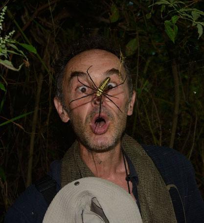 Arachnophobie! ©Michel Aymerich