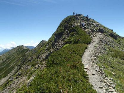 仙丈ヶ岳 コース 登山 ガイド