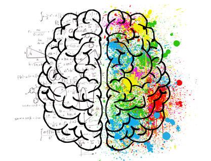Zeichnung des Gehirns und farbliche Darstellung der rechten Gehirnhälfte bei Kreativität.