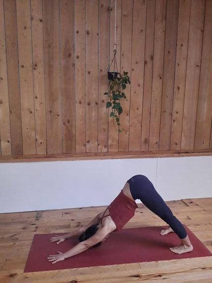 Adho Mukha Svanasana Posture de Yoga