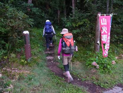 登山口から、いきなり、ずっと急登です。