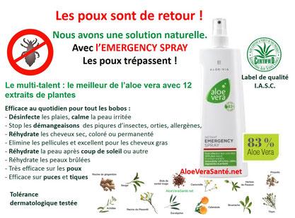 L'aloe vera un traitement naturel contre les poux et lentes avec Emergency Spray