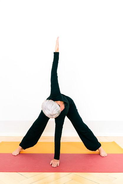 Yoga-Polarity in Bern