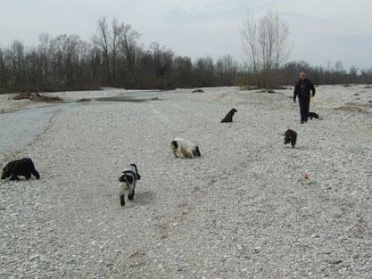 a correre al fiume tutte assieme...