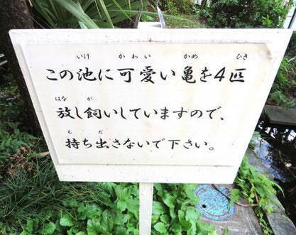 オイルライフ、江古田、練馬