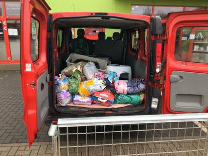 Spendenabholung Fressnapf Grevenbroich, Foto: Härtel