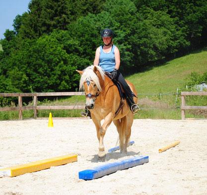 Das junge, unerfahrene Pferd lernt auch im weiteren Verlauf spielerisch das vom Boden Erlernte mit Reiter umzusetzen. Ein Gebiss ist dafür nicht nötig.