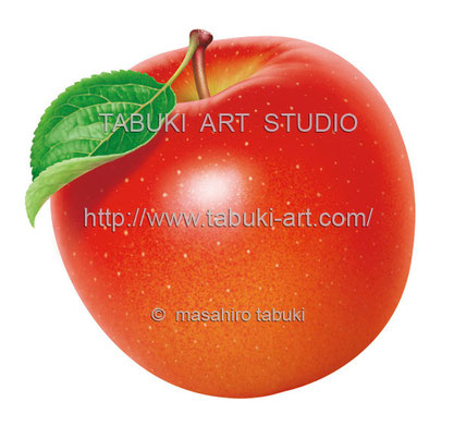 リンゴ丸 RD10633