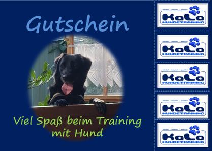 Hundetraining Gutschein