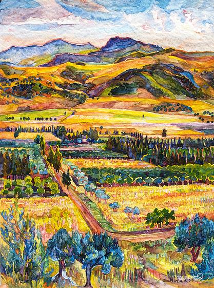 La vallée de la Seybouse en été 1990