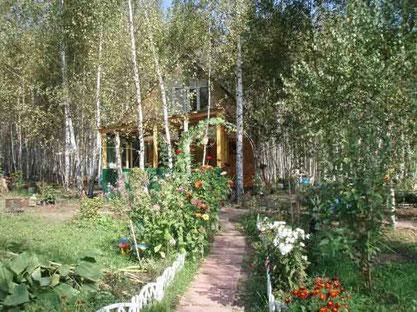 一個位於俄國受《鳴響雪松》系列書啟發而成立的生態村