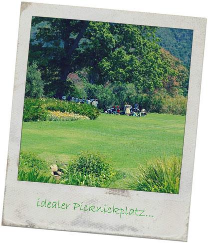 idealer Picknickplatz