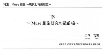 Muse細胞研究の最前線