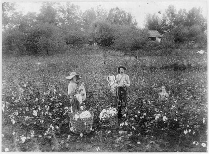 Bild: Library of Congress / Public domain.**