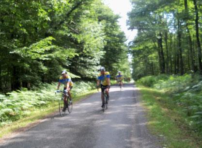 -               La traversée de la forêt de Tronçais entre Cérilly et Ainay le Chateau