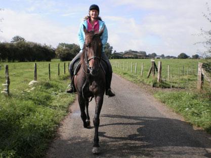 A cheval en forêt de Crécy, en Baie de Somme
