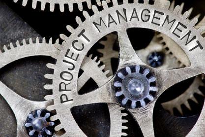 Projektmanagement: Sicherung einer hohen und nachhaltigen Projektwirkung.